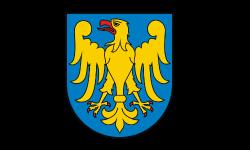 pszczyna-logo